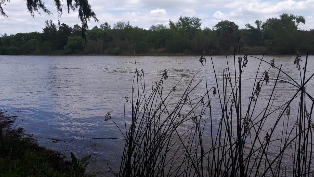 Vendo Isla , sobre Canal Irigoyen Zárate