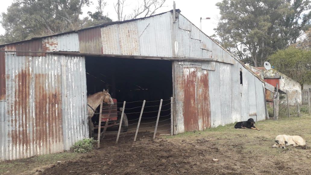 Vendo campo ganadero en Gualeguaychú, Entre Rios. 630ha
