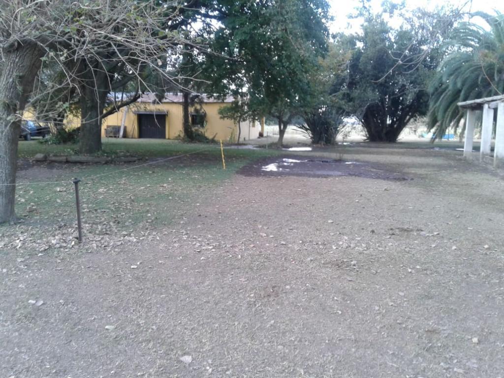 Vendo Quinta de 5ha sobre R9, Baradero, Pcia.Bs.As.