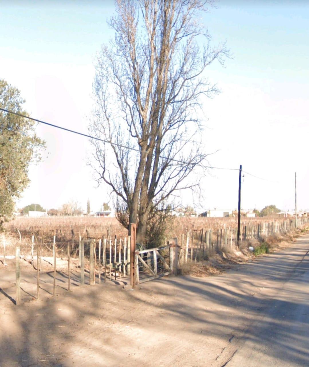 Vendo 160 has en Mendoza