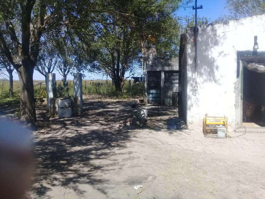 Vendo 540 ha en Colonia Galvez Prov de Santa Fe