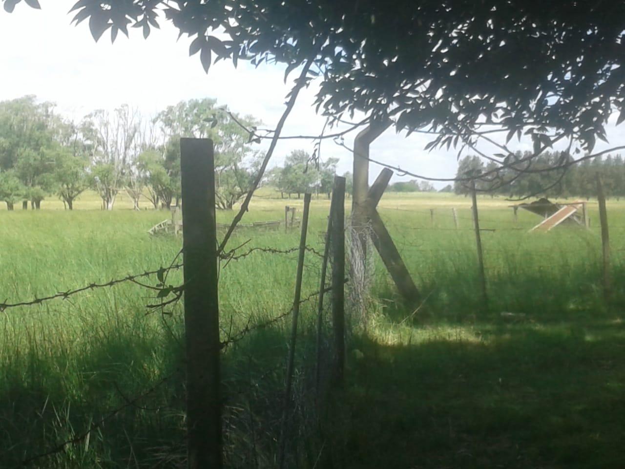 Vendio Campo de 2ha, camino Zte - Capilla del Señor