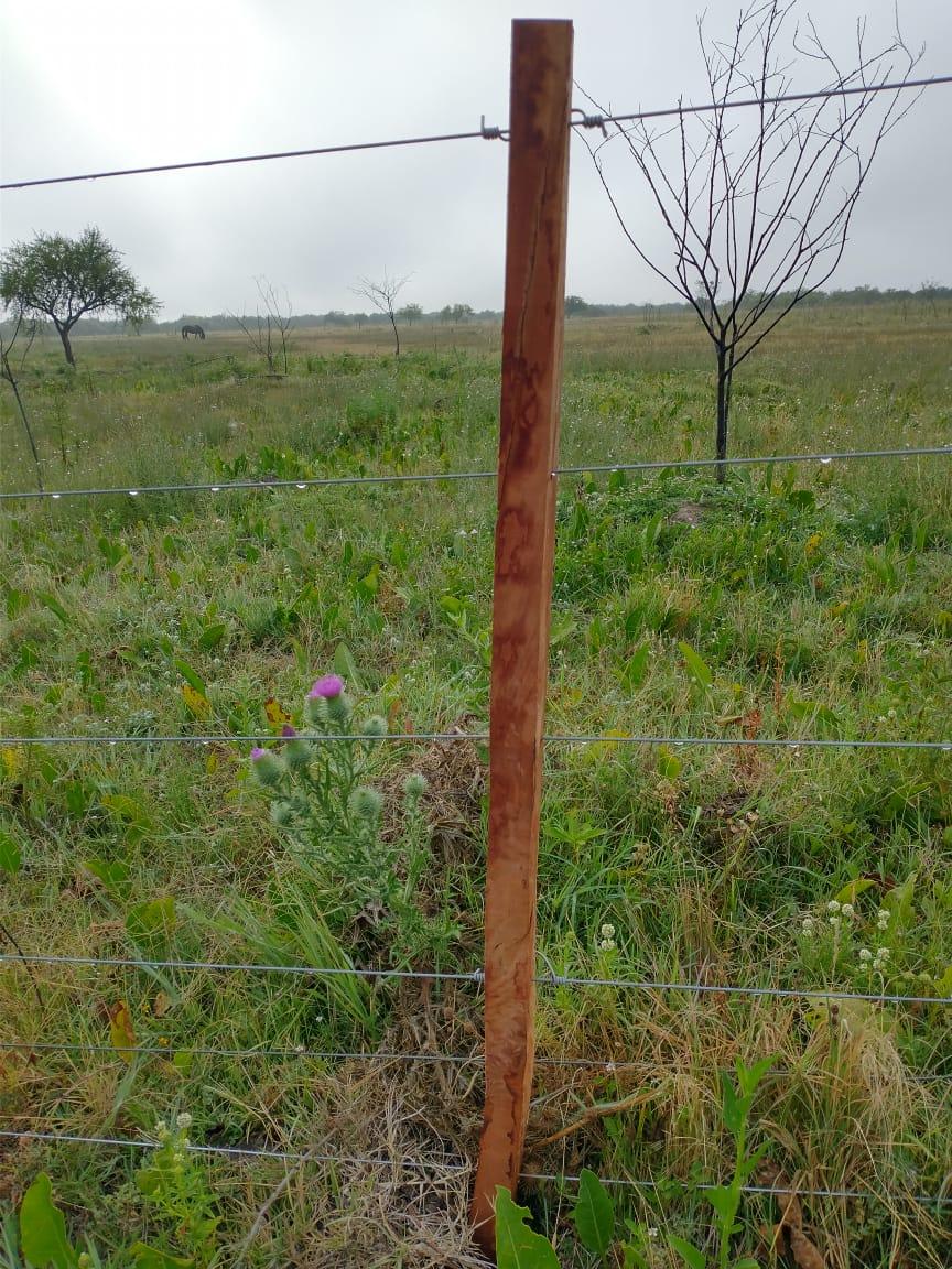 Vendo campo 189 has en Ibiucuy, Entre Ríos