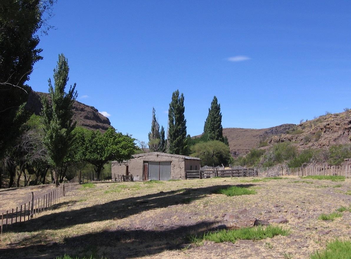 Vendo campo ganadero 25000 has en Chubut